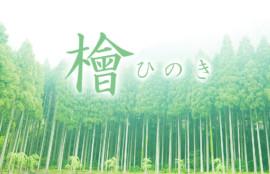 銀座 檜 ひのき お香 香源 歌舞伎