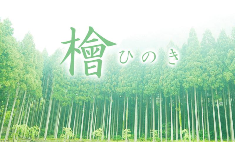香源 銀座本店の6月の特集は「檜の香り」!